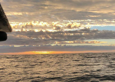 fall sport fishing charter report santa barbara
