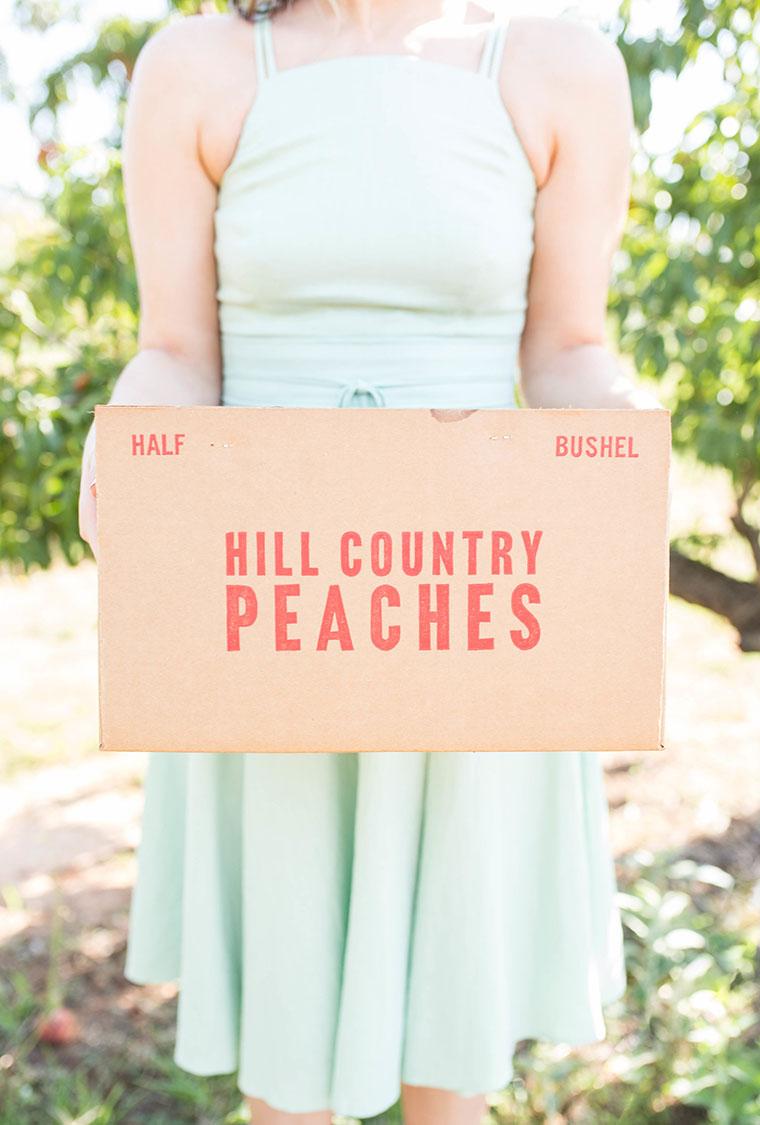 Peach Picking In Fredericksburg 13