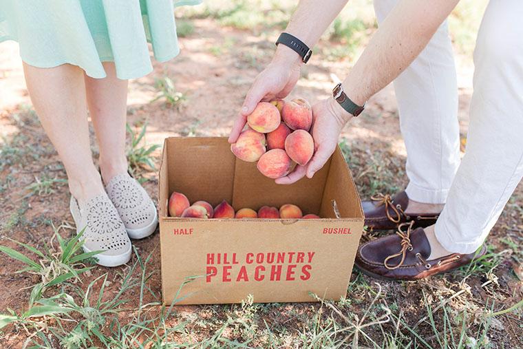 Peach Picking In Fredericksburg 7