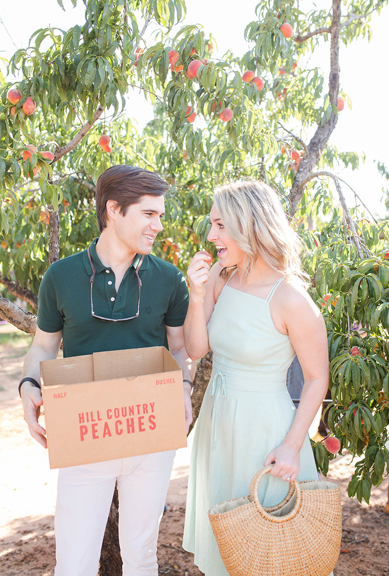 Peach Picking In Fredericksburg 9