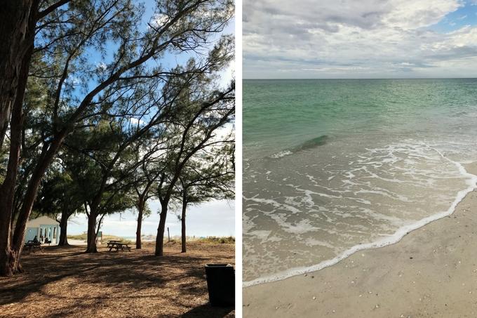 Our Florida Trip - Coquina Beach