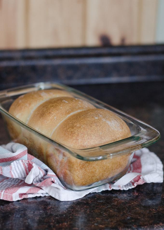 A baked loaf of sourdough sandwich bread still in the pan.