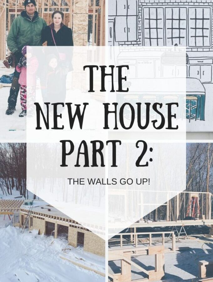 The New House Part 2: The Walls Go Up!