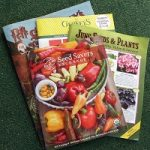 Why Do You buy Garden Seeds in Winter?