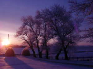 Sunrise in Winter