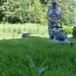 Man mowing