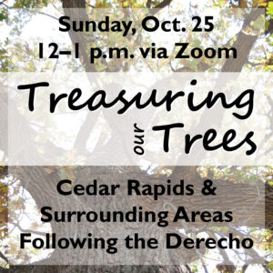 Flyer:Treasuring Our Tree