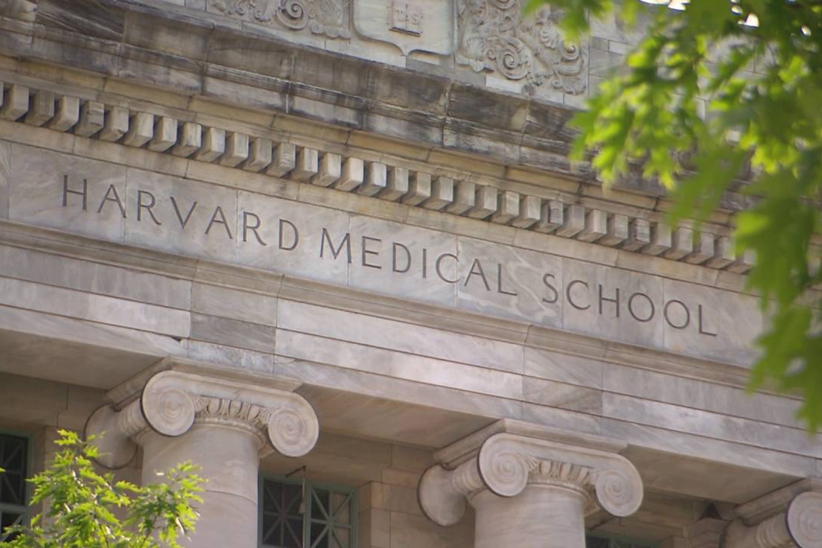 Ethics education Harvard bioethics course