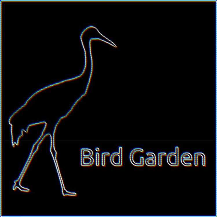 Bird Garden Lofi Logo