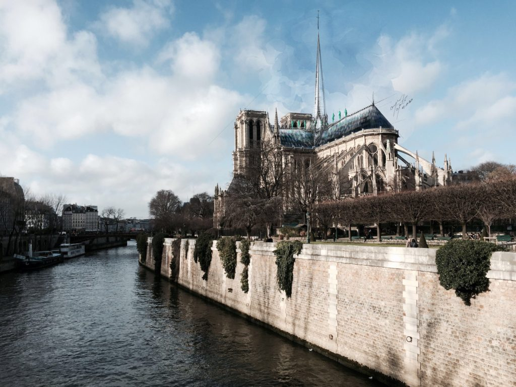 Hand drawing of notre dame cathedral y SB architects