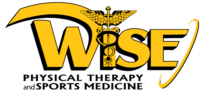 Wise Physical Therapy and Sports Medicine Group