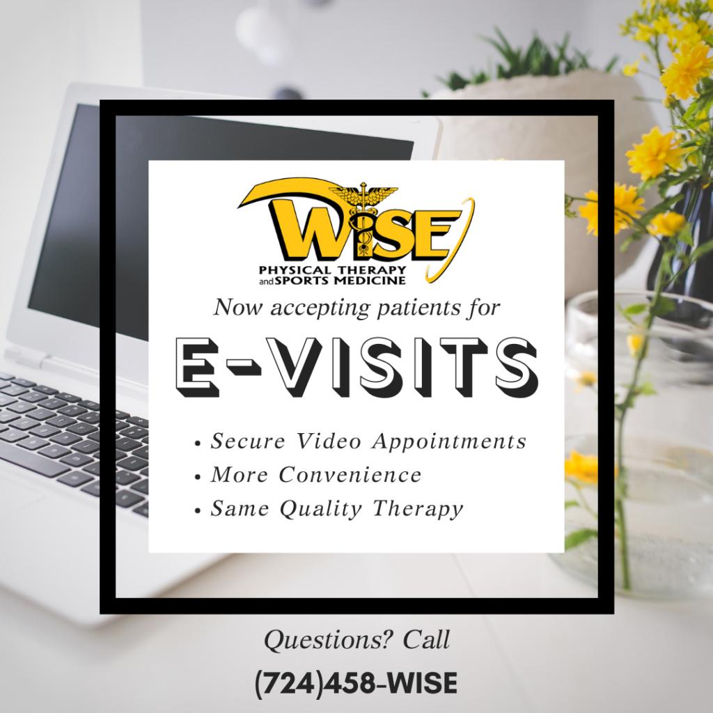 E-Visit Program Wise PT
