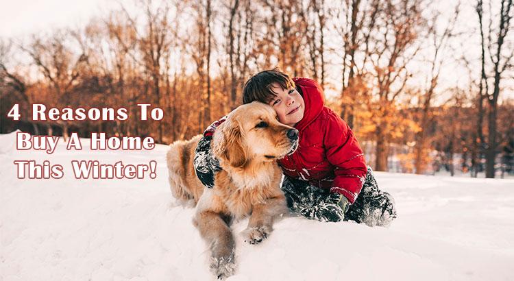 Buy Home Winter