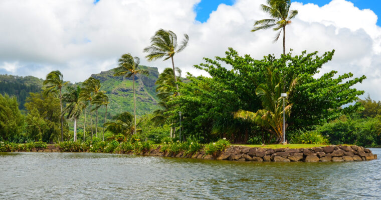 Travel Outtakes: Hawaii & St. John