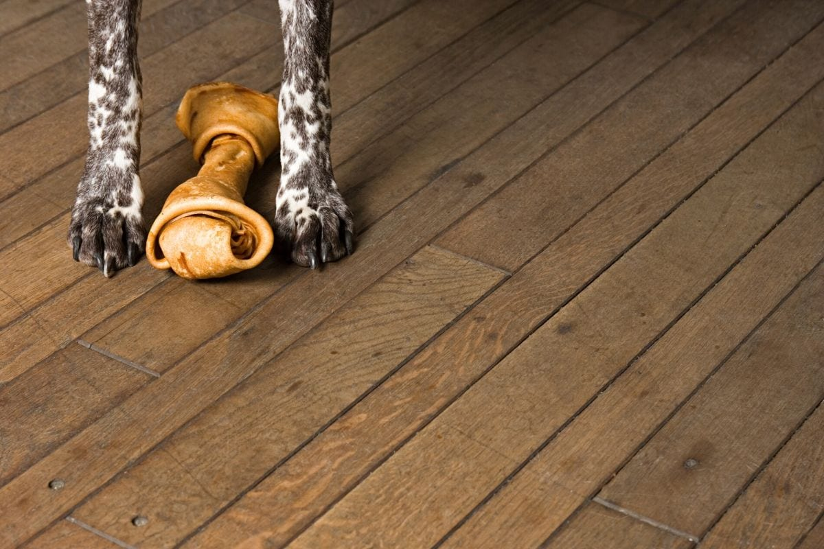 A dog-proofed hardwood floor.