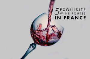 5 Exquisite Wine Routes in France