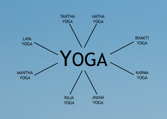 The many styles of Yoga