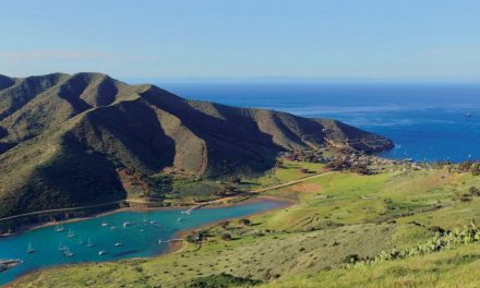 XANADU CATALINA ISLAND 5K ADVENTURE