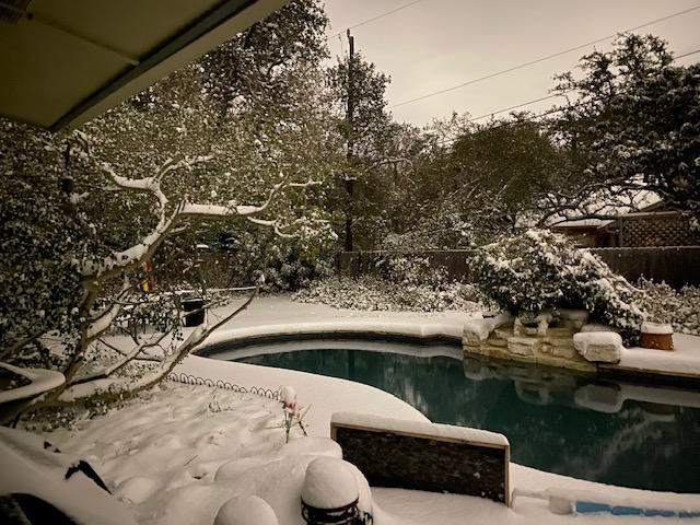 Early morning snowfall in San Antonio