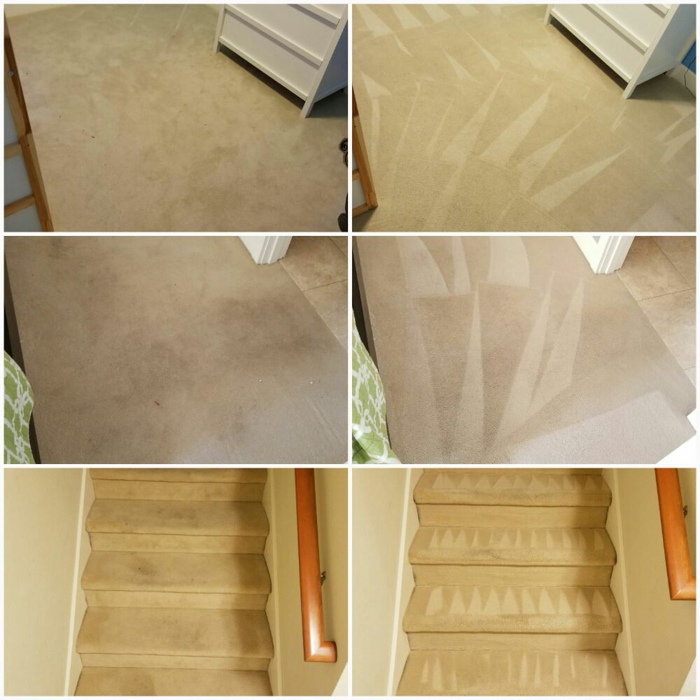 Amazing Results on any type of carpet