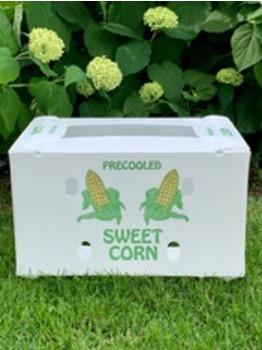 sweet corn in corrugated plastic box