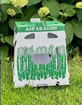 asparagus in corrugated plastic box