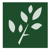 CSU faculty and Extension specialists launch a free new app to help identify shrubs and trees
