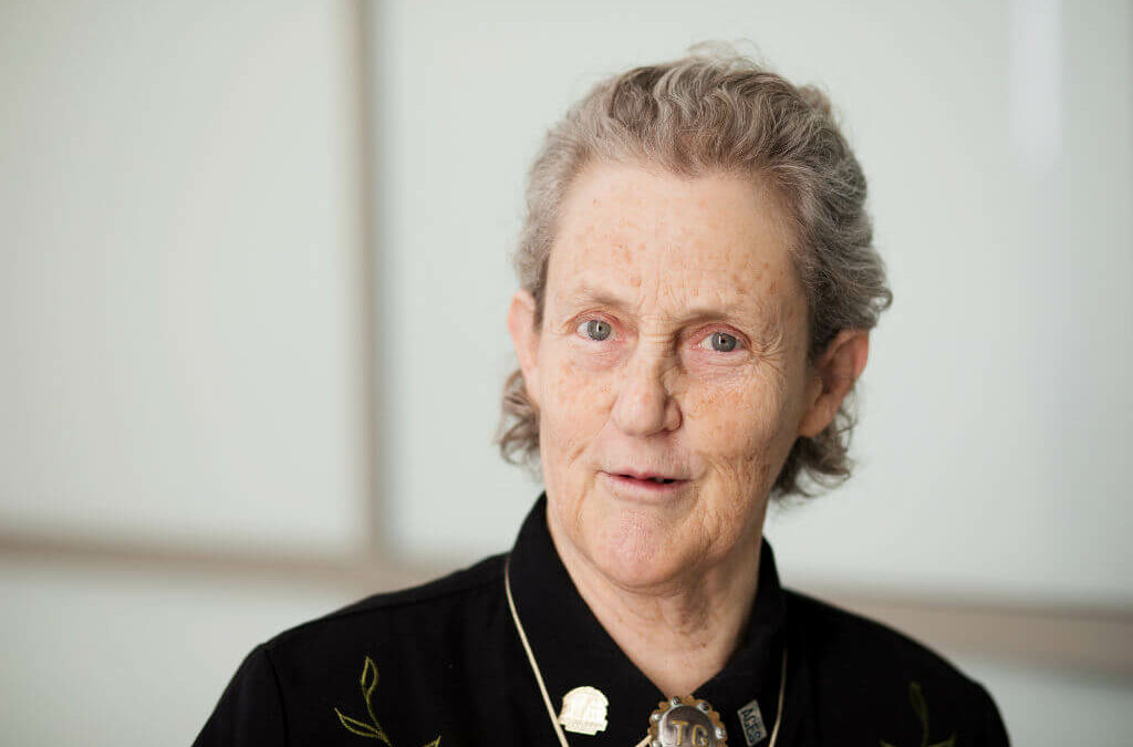 Journeys of Innovation:  Thinking Like the Herd – the story of Temple Grandin's innovations