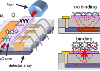 Multi-Analyte Optical Biosensor