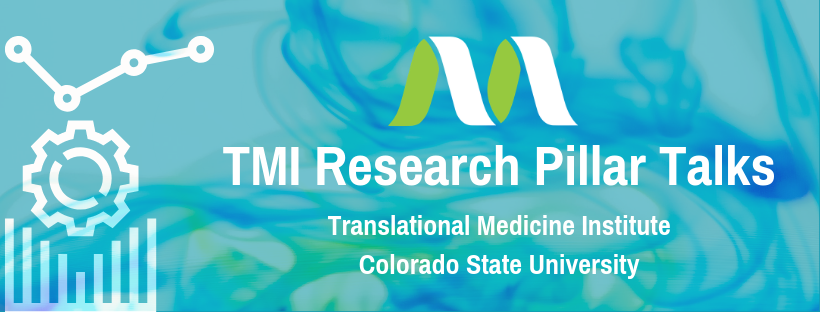 TMI Research Pillar Talks