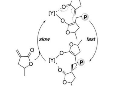 High-Speed, Stereoselective Polymerization for Renewable, Bio-derived Plastics