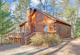 Stupendous Cabins For Rent In Georgia Cabin Rentals In Ga Sliding Download Free Architecture Designs Viewormadebymaigaardcom
