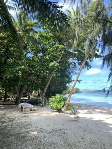 The best island in Fiji, Turtle Island