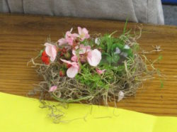 bird nest, art, science, Nature Detectives, fun, creativity, nature
