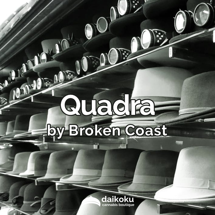 02/04/20: Quadra byBroken Coast | A variant of Headstash.