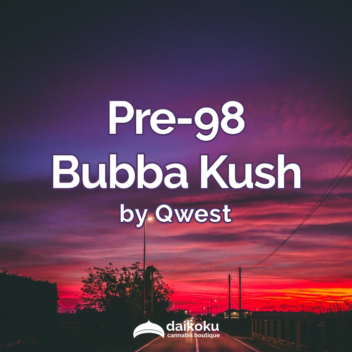 01/04/20: Pre-98 Bubba Kush by Qwest | This cultivar is no joke!