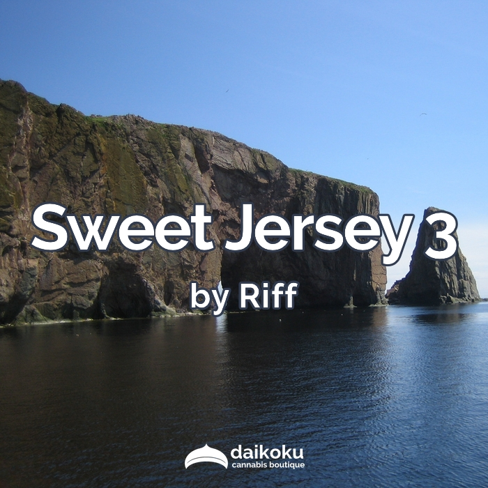 04/04/20: Sweet Jersey 3 by Riff | High THC Sativa.