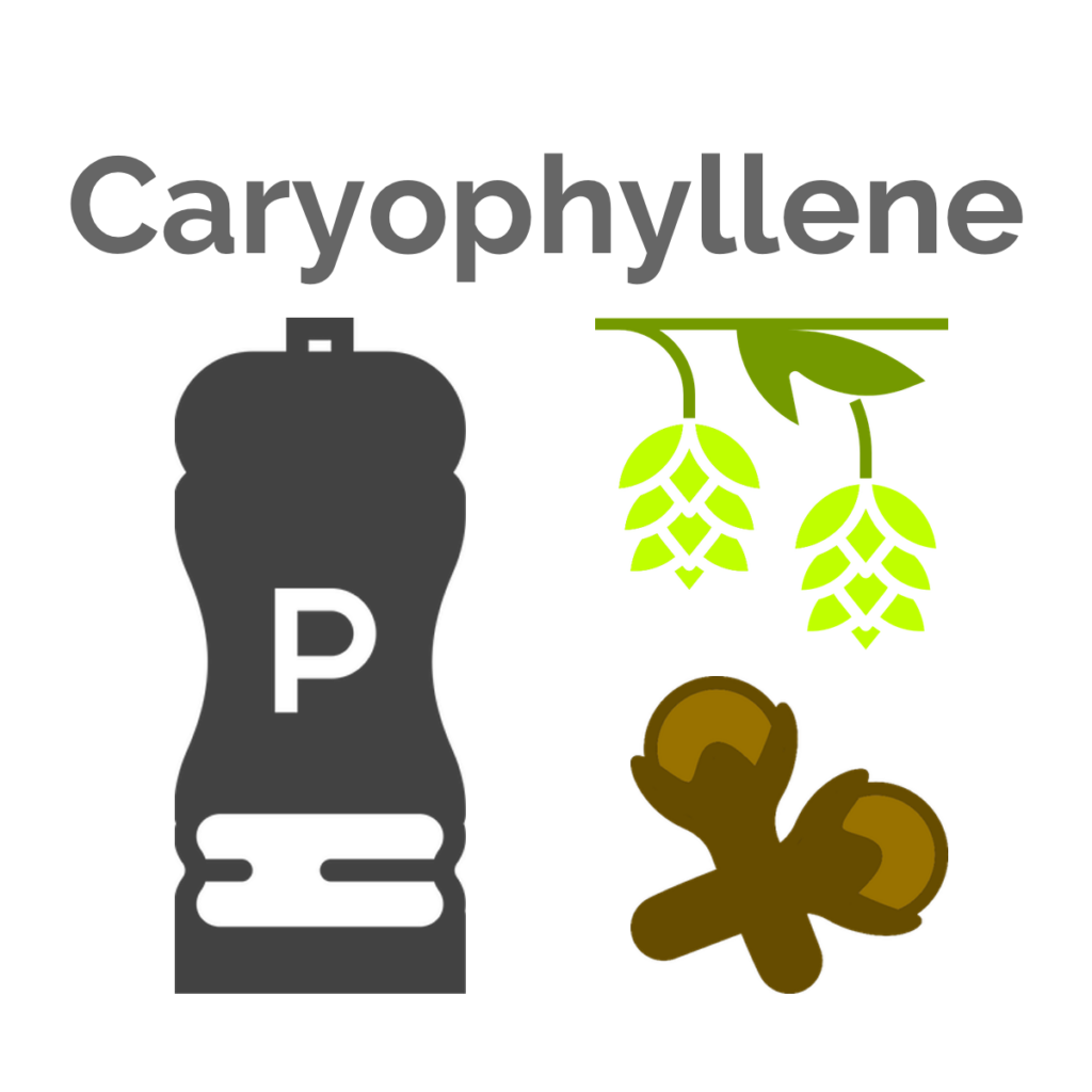 Caryophyllene is the main terpene found in Quadra