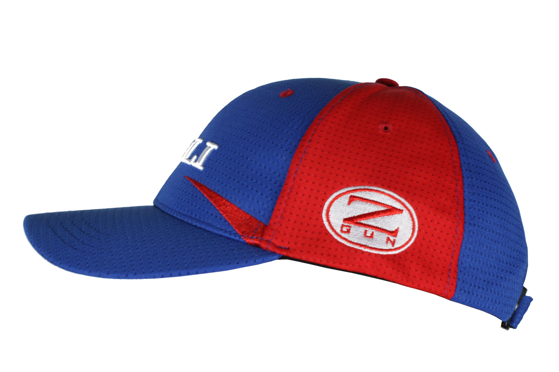 Zoli Dart Embroidered Hat Side