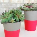 Tut Tuesday: DIY Dipped Neon Pots
