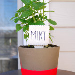 DIY Clay Garden Markers for Curbly