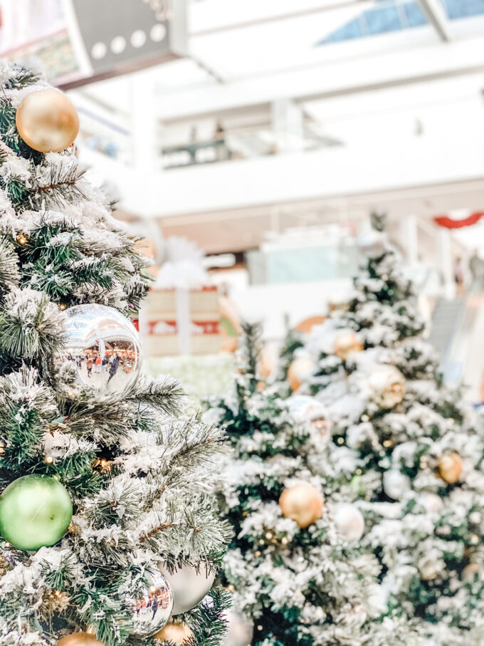closeup of holiday trees decorated in the mall