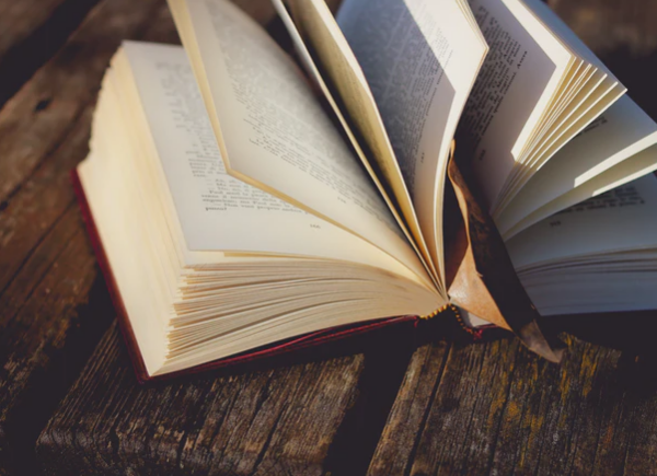 Light hearted books to end your day on a high