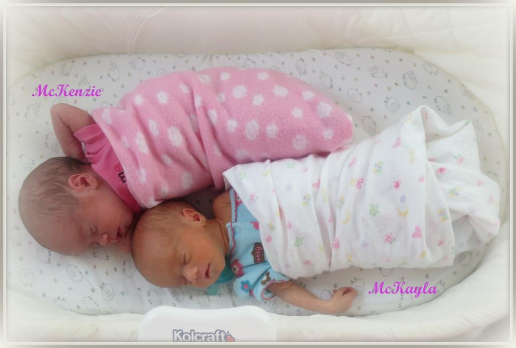 McKenzie and McKayla in Basinet