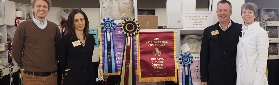 Show Results
