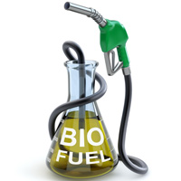Example of how hemp seeds are used as biofuels