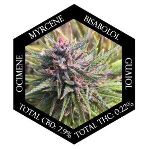 Purple Emperor hemp with terpenes and Cannabinod numbers