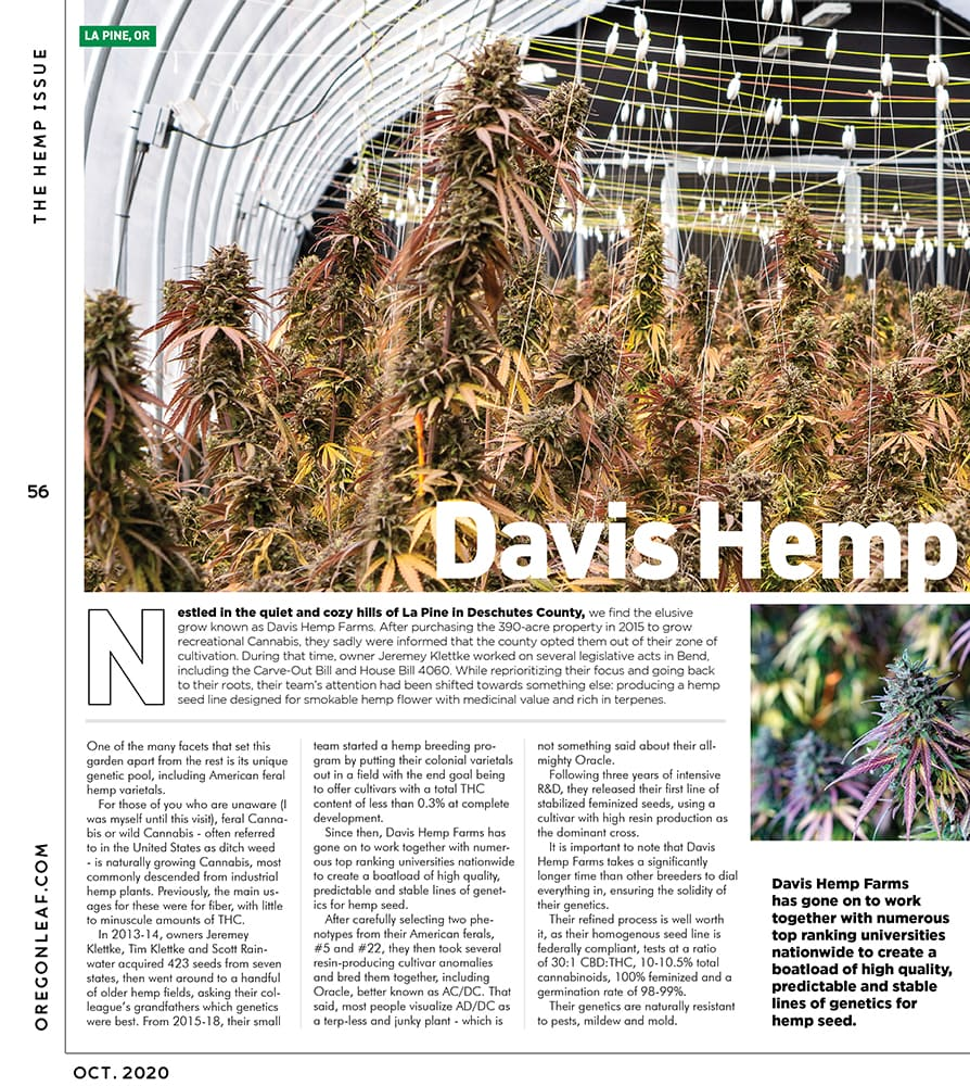 Oregon Leaf October 2020 page 56 featuring a greenhouse of Purple Emperor Hemp