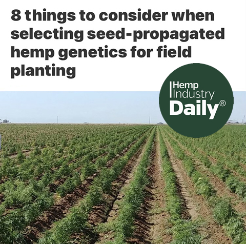 Picture of a hemp feild and the cover to things to consider article