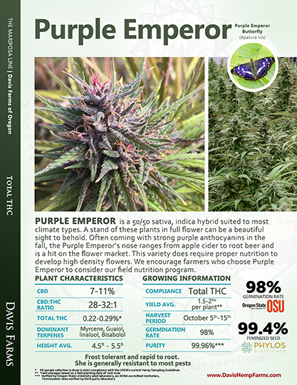 Available data for hemp variety Purple Emperor